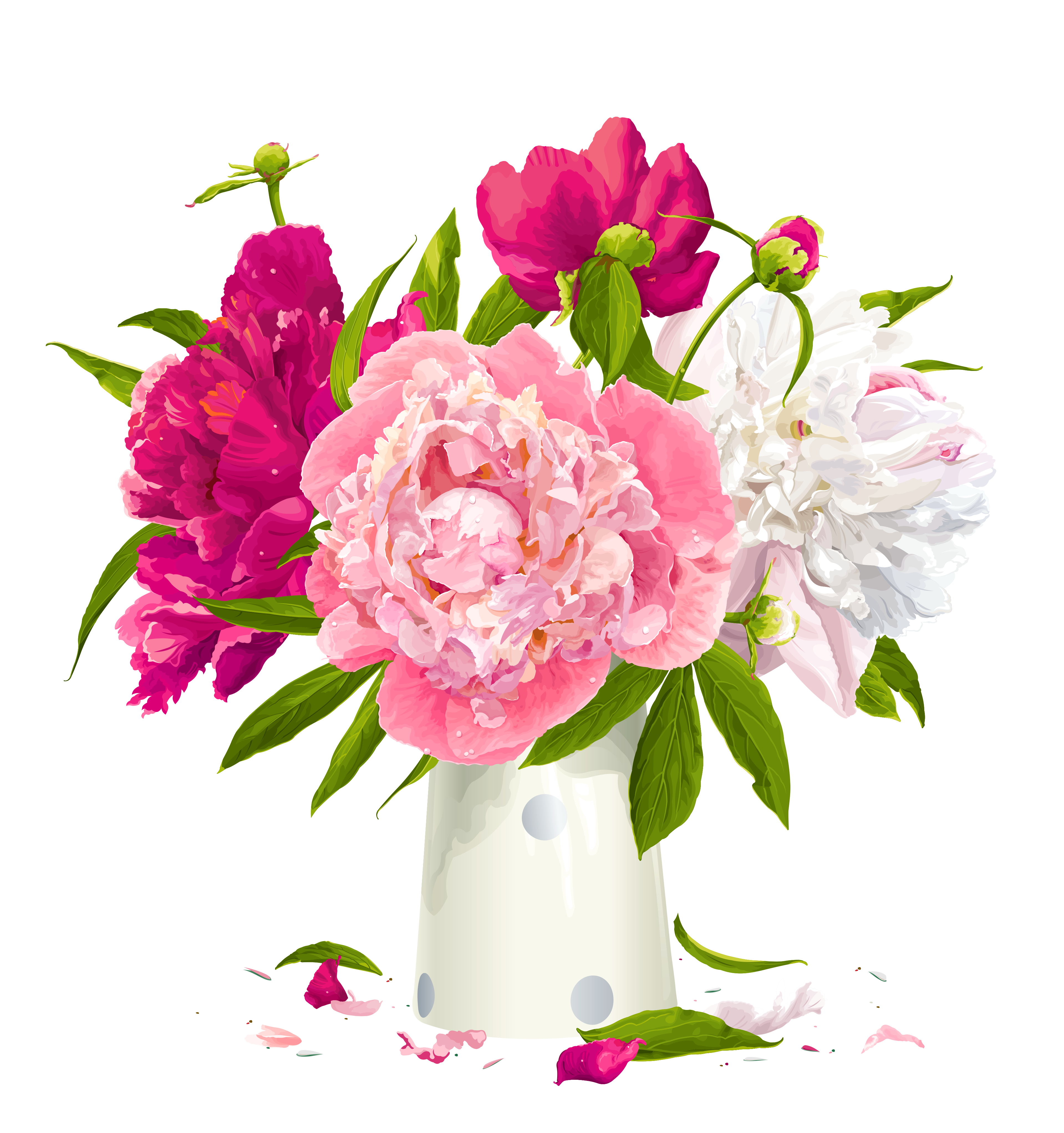 Vase with Peonies Clipart.