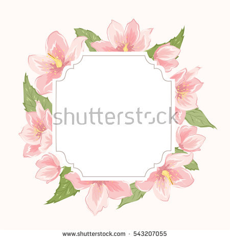 Helleborus Niger Stock Photos, Royalty.