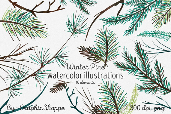 Watercolor Pine Tree Branches Winter Clip Art Rustic #pine.