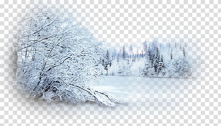 Winter Desktop Snow , snow scene transparent background PNG.