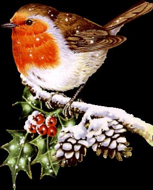 Cute Winter Bird Clip Art.