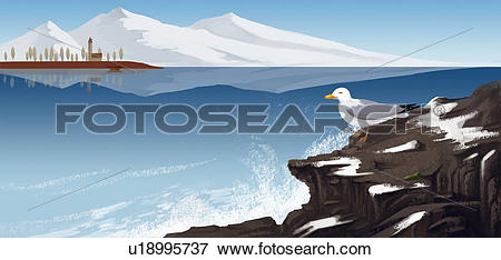 Stock Illustration of Sea Gull on a Rocky Winter Shore u18995737.