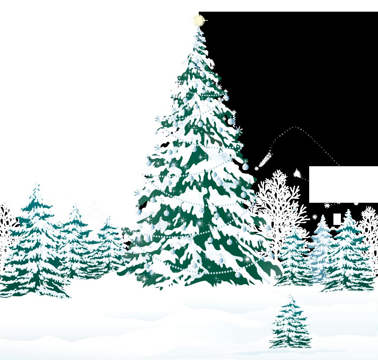 Christmas tree Pine Snow.