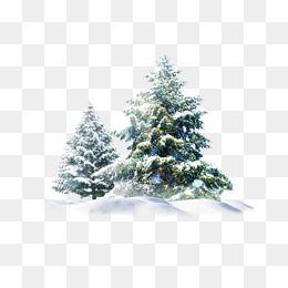 Christmas Snow Tree Creative.