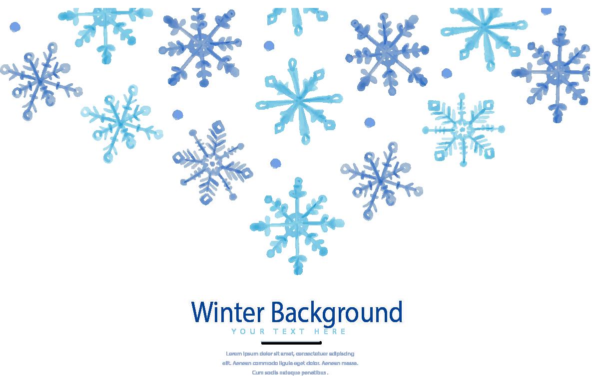 Winter Snowflake Euclidean vector.