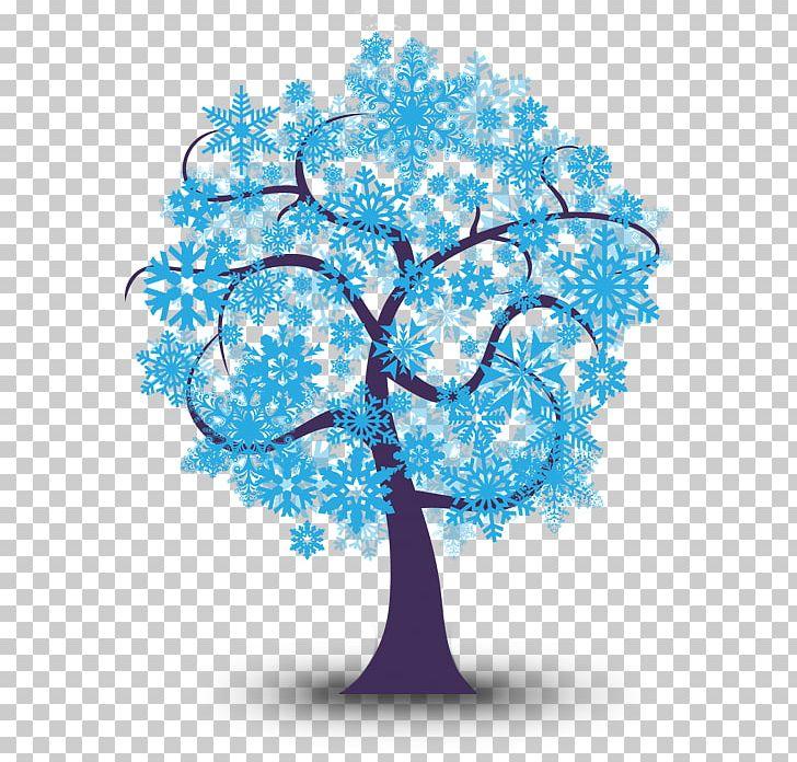 Northern Hemisphere Southern Hemisphere Winter Solstice PNG.