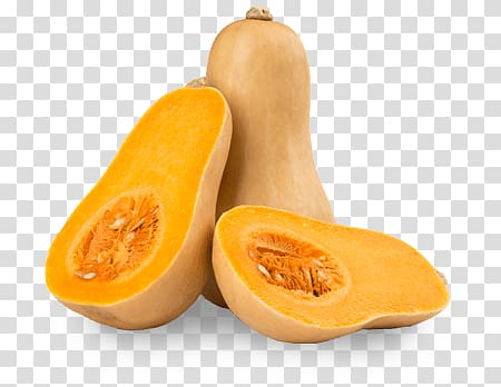 Gourd fruits, Butternut Squash transparent background PNG.