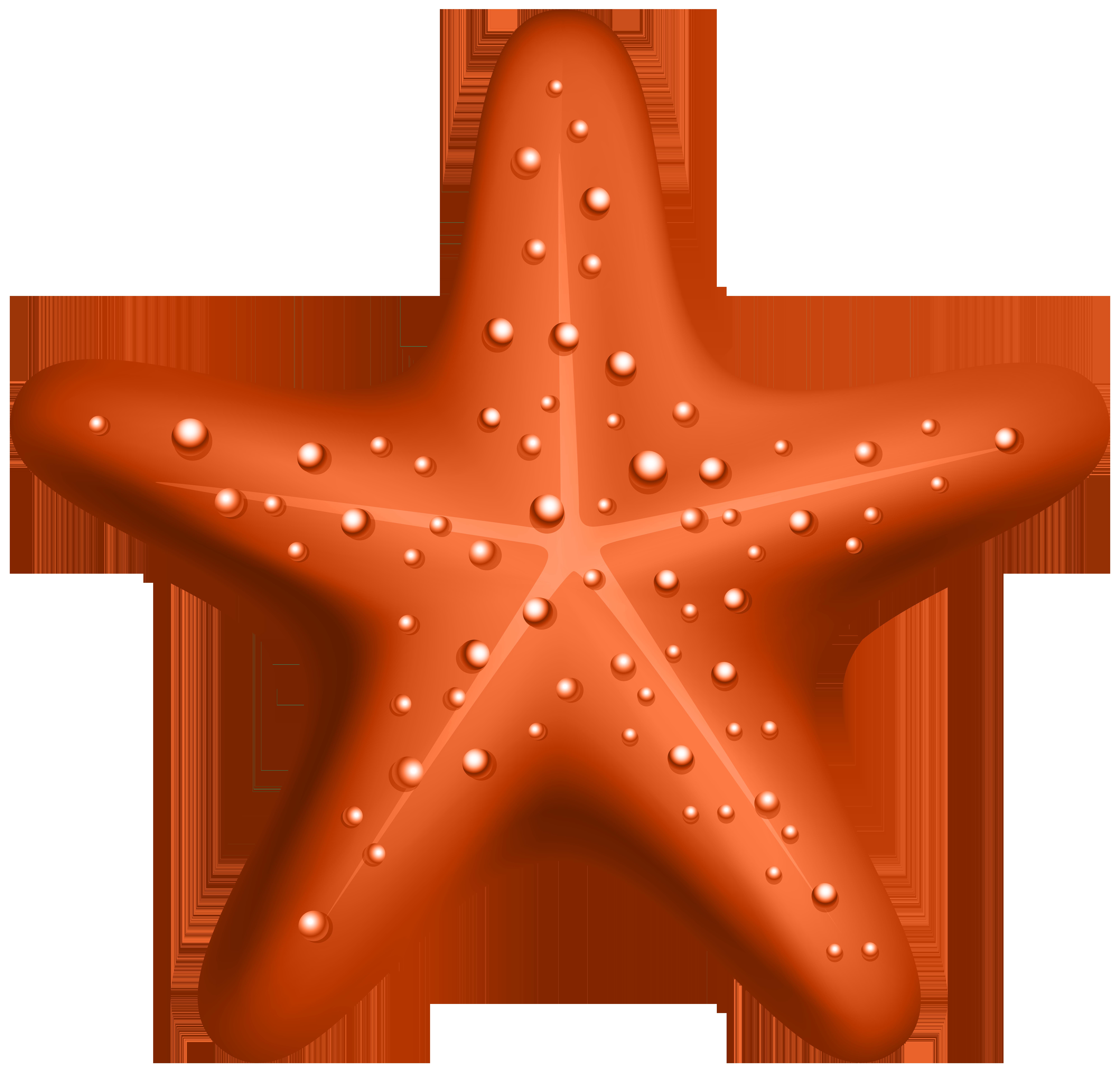 Orange Starfish PNG Clipart.