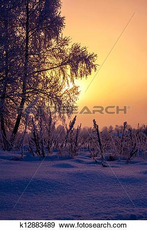 Stock Photograph of Warm cold winter sunrise k12883489.