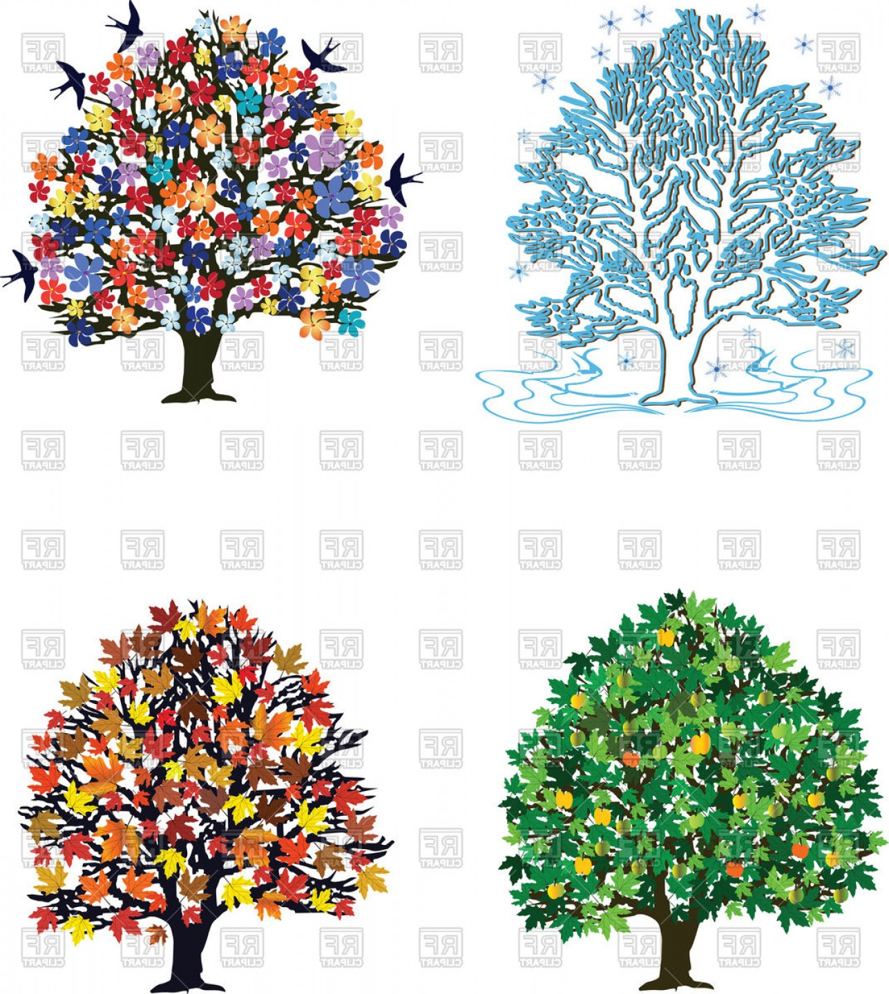 Four Seasons Trees In Spring Summer Autumn Winter Vector.