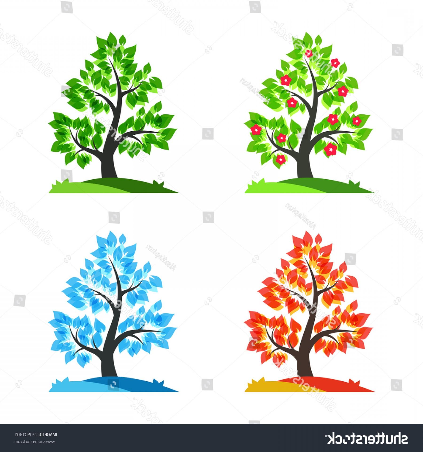 Spring Summer Autumn Winter Tree Vector.