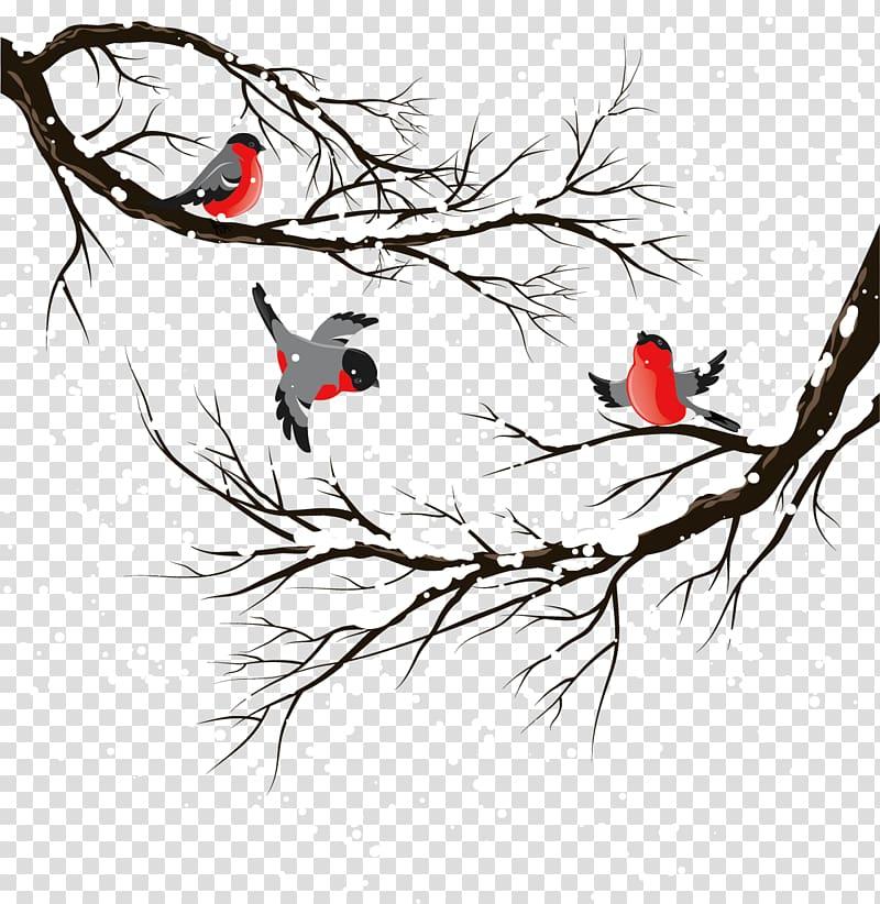 Three birds on bare tree illustration, Bird Winter.