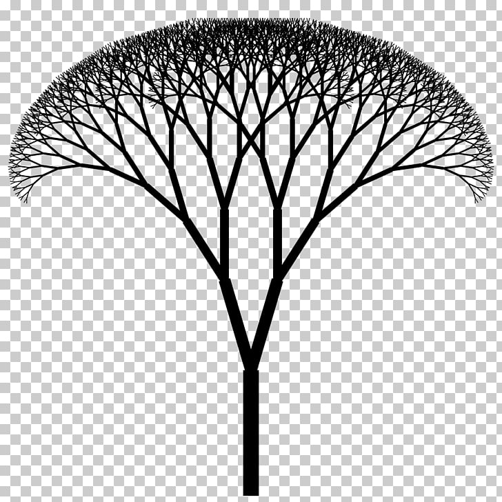 Fractal canopy H tree Fractal tree index, structure icon PNG.