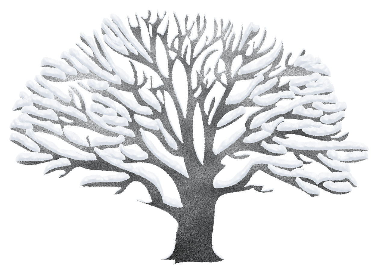 Winter tree clipart png.