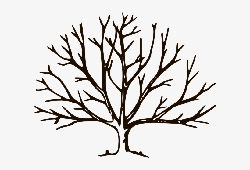 Clipart Empty Tree Chocolate Clip Art At Clker Com.