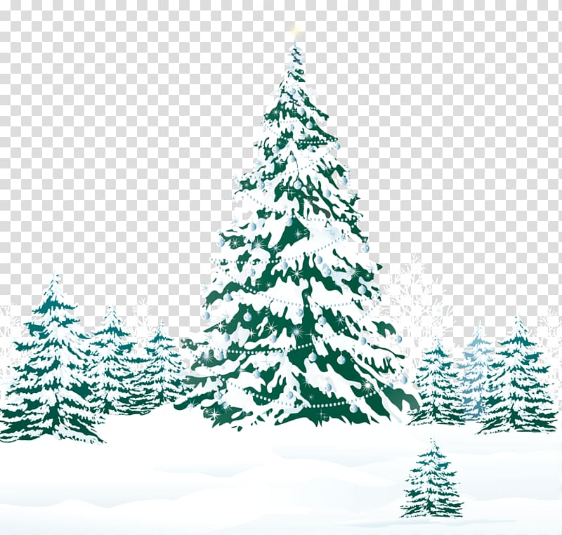 Pine trees cover with snow illustration, Christmas tree Pine.