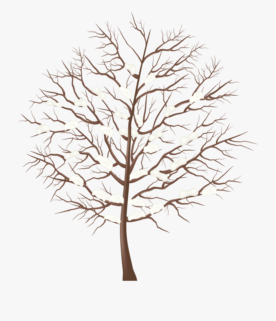 Winter Tree Transparent Png Clip Art Image.
