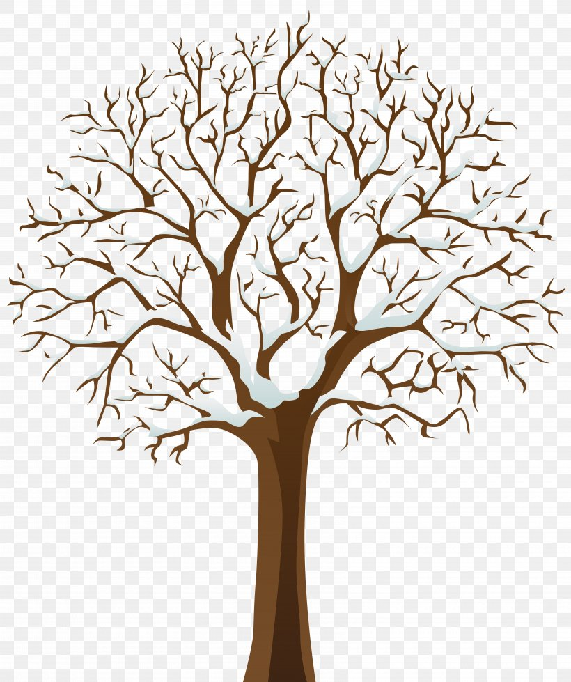 Tree Winter Clip Art, PNG, 6700x8000px, Tree, Arecaceae.