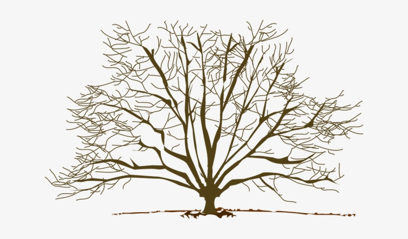 Winter Tree Clipart.