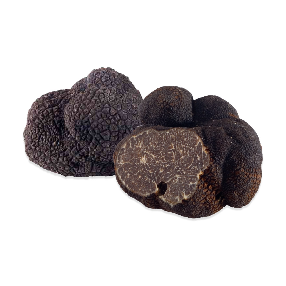 Fresh French Black Winter Perigord Truffles.