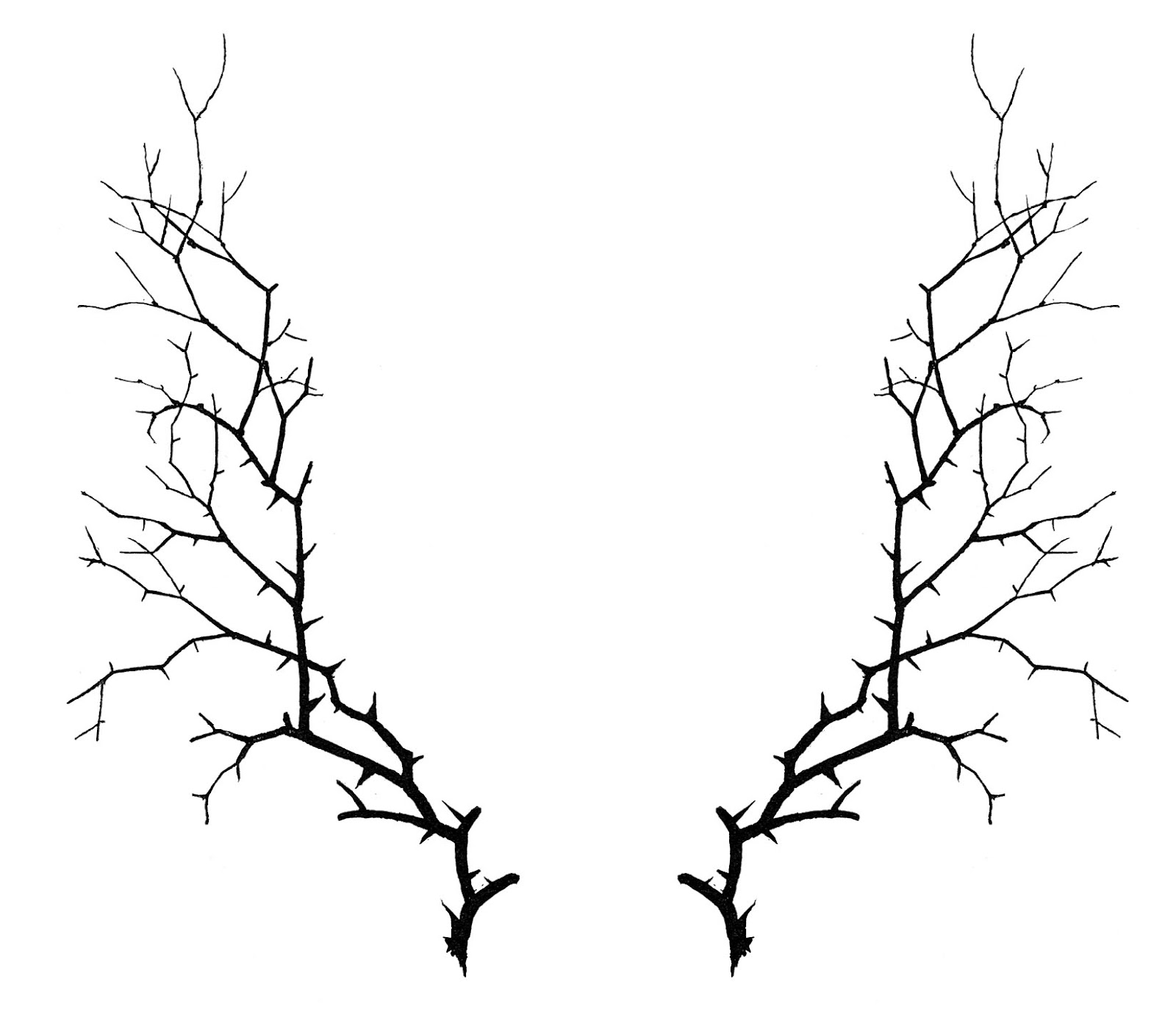 Twig border clipart silhouette.