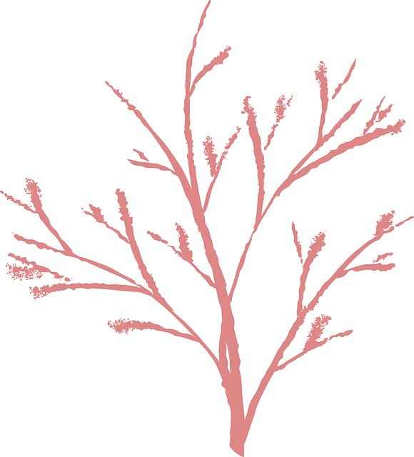 Free vector graphic: Branch, Nature, Winter, Twig, Dead.