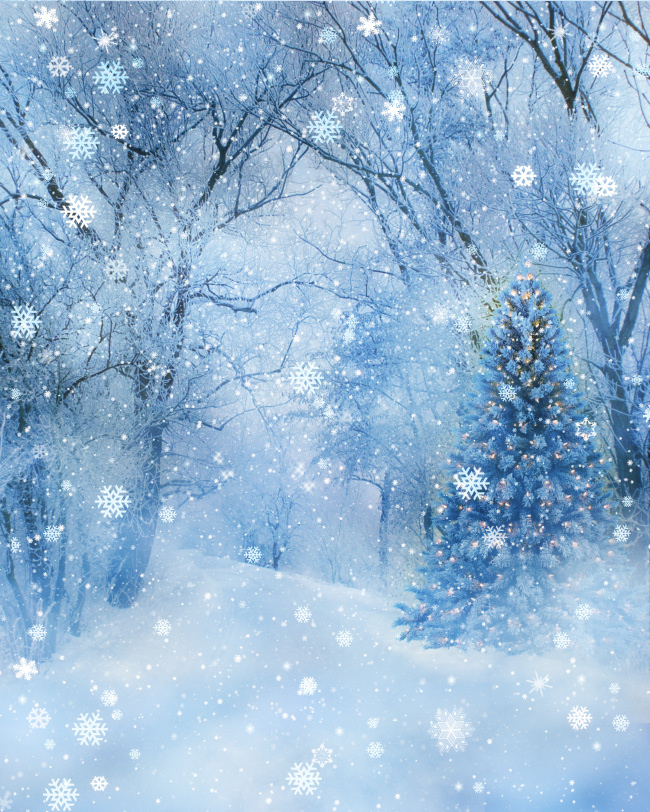Winter Wonderland Backgrounds.