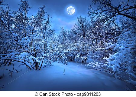 Stock Photos of Moonlight night in winter wood csp9311203.