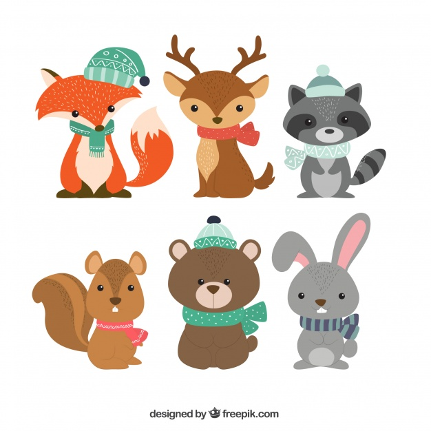 Woodland Animals Vectors, Photos and PSD files.