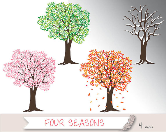 Four Seasons Trees Clipart and Vector with Spring, Summer, Fall.