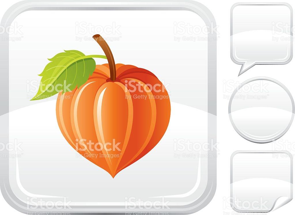 Winter Cherry Icon On Silver Button stock vector art 165673781.