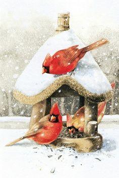 cardinal umbrella cute :).