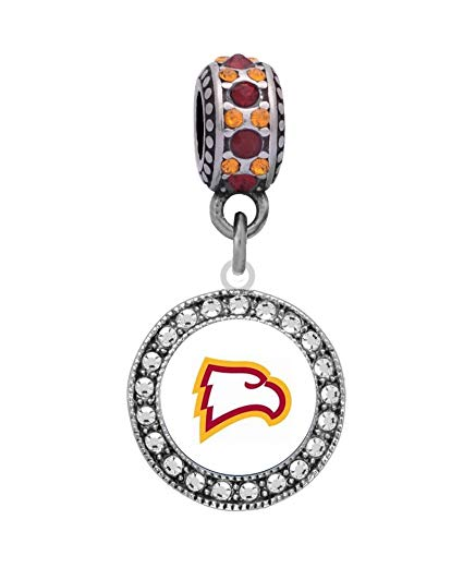 Amazon.com : Winthrop University Logo Charm Fits European.