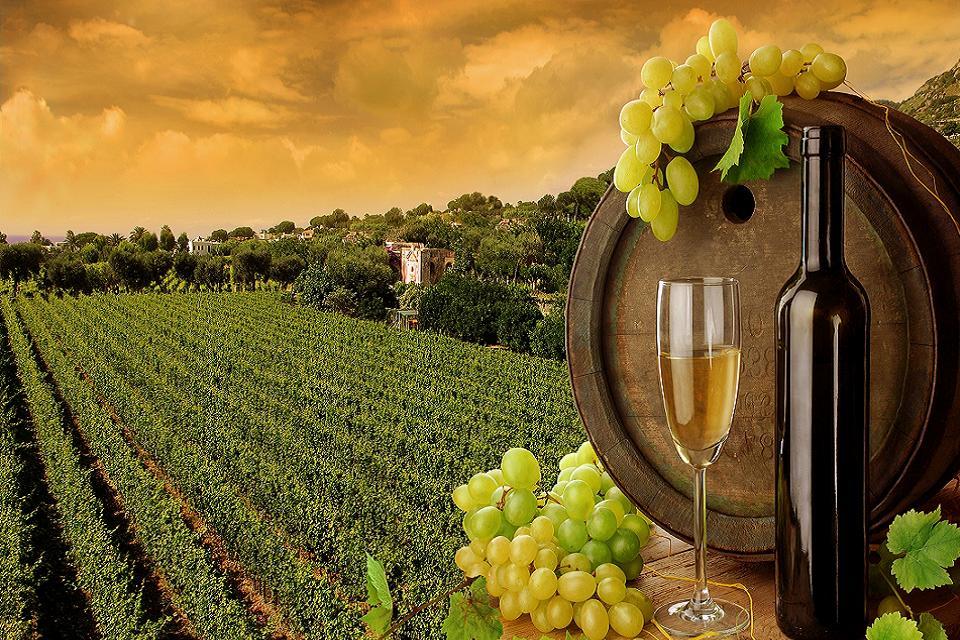 Wine bottle good wallpaper hd.