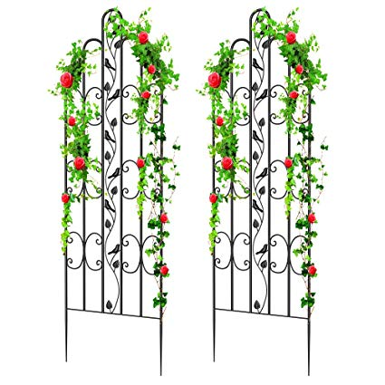 "Amagabeli 2 Pack Large Garden Trellis for Climbing Plants 71"" x 21"" Heavy  Duty Rustproof Iron Plant Trellis for Potted Plants Support Tall Wall Metal."