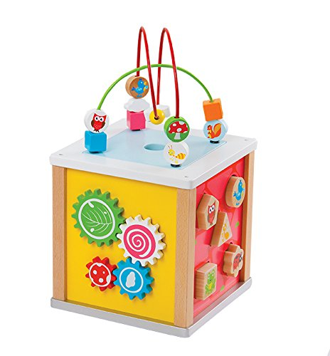 NEW Lelin Wooden Nature Activity Cube Beads Wire Maze Creative.