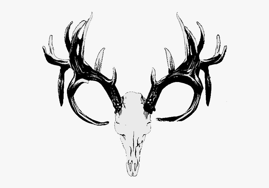 Red Deer Hunting White.