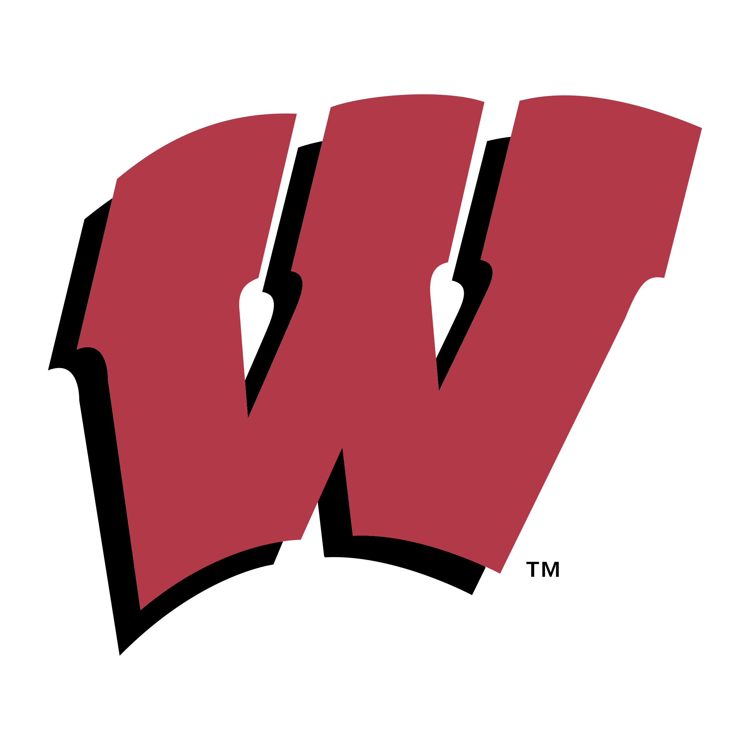 Wisconsin Badgers Logo PNG Transparent & SVG Vector.