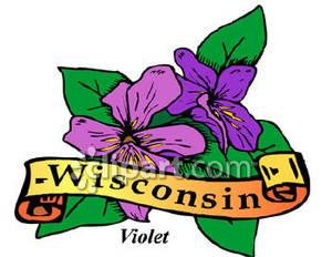 Wisconsin State Flower, the Violet.