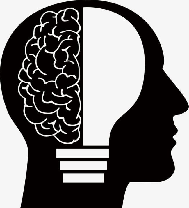 Wisdom Of The Brain PNG, Clipart, Brain, Brain Clipart, Bulb.