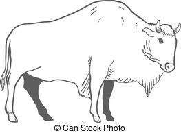 Wisent Illustrations and Clip Art. 152 Wisent royalty free.