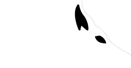 Swift Fox Systems.