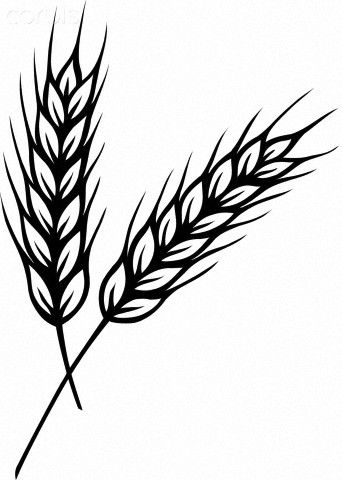 Wispy wheat salk clipart clipart images gallery for free.