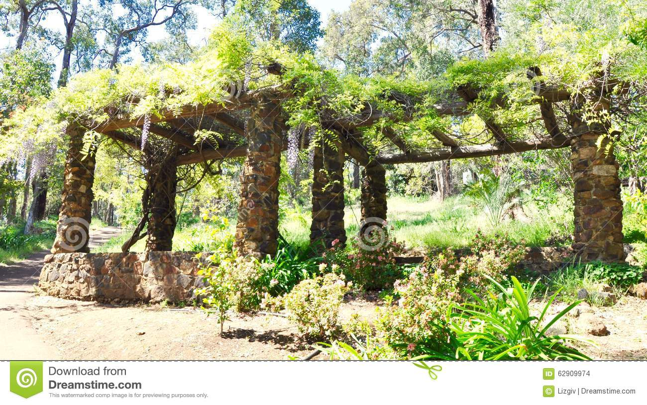 Wisteria Arbor Stock Photos, Images, & Pictures.