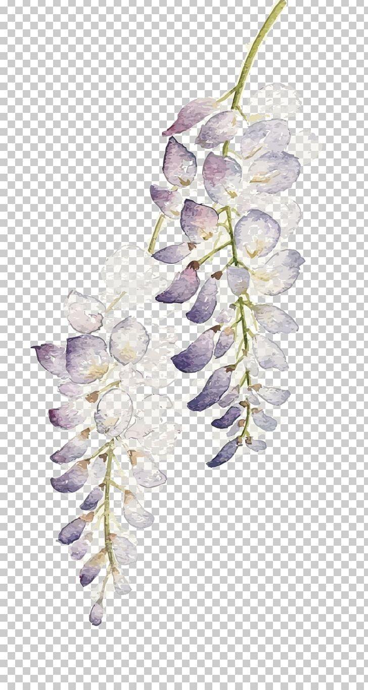 Flower Watercolor Painting Wisteria Floribunda PNG, Clipart.