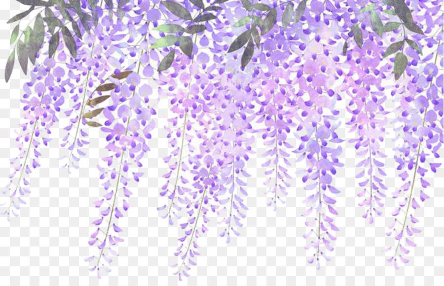 Wisteria Flower.