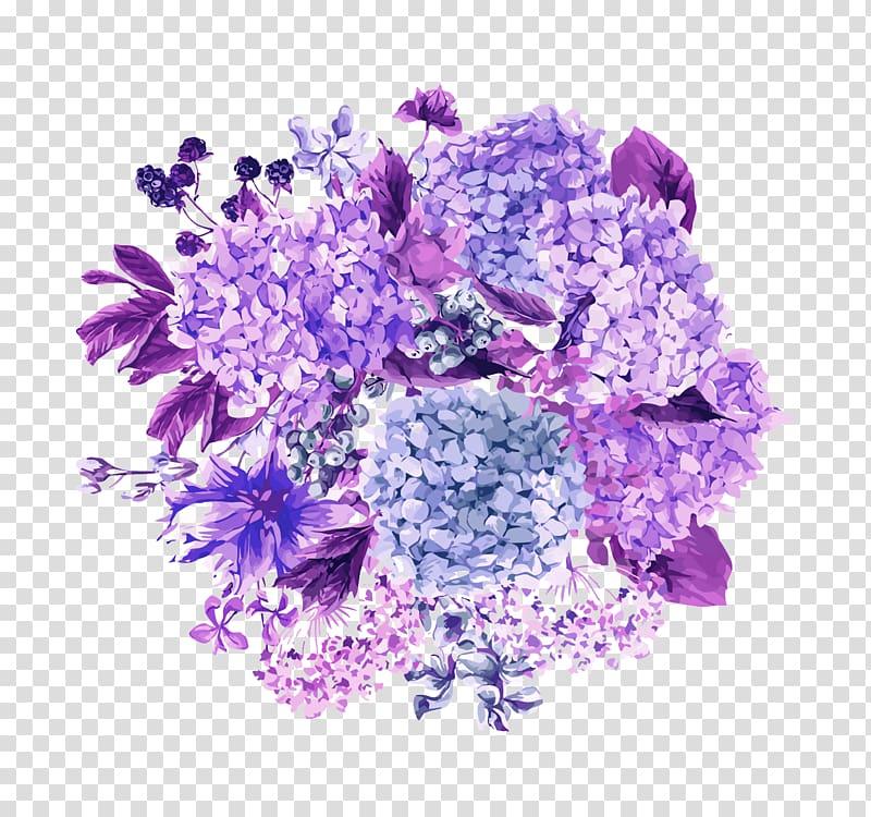 Purple hydrangea flowers illustration, Hydrangea transparent.