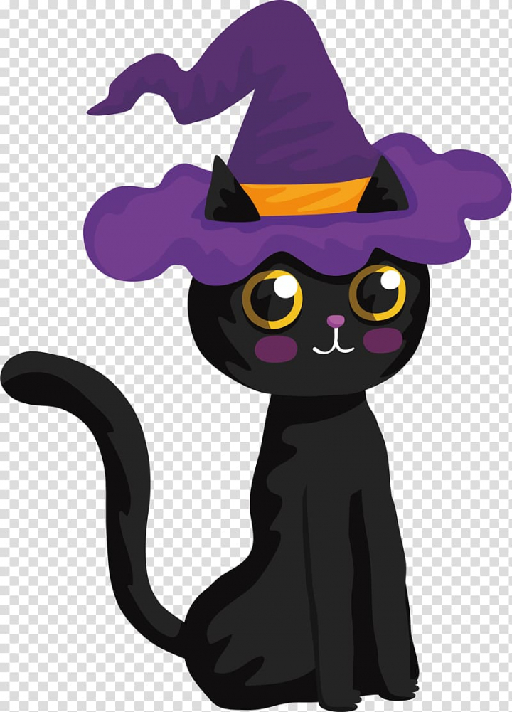 Black cat with purple witch hat , Black cat Halloween Witch.