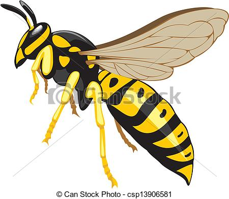 Wasp Stock Illustrations. 2,525 Wasp clip art images and royalty.