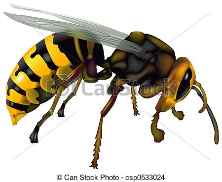 Wasps Stock Illustrations. 2,519 Wasps clip art images and royalty.